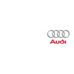 Cover chiavi auto Audi