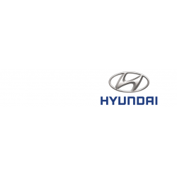 Cover chiavi auto Hyundai