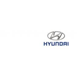 Hyundai car key cover