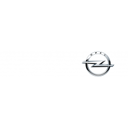 Opel car key cover