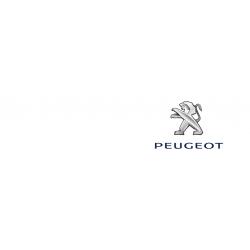 Cover chiavi auto Peugeot