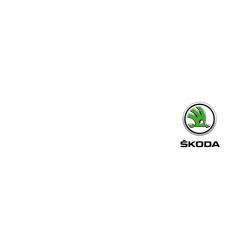 Cover chiavi auto Skoda
