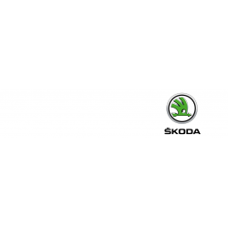 Skoda car key cover