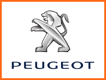Peugeot key cover